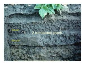 Creation of hardened soil layer due to tilling