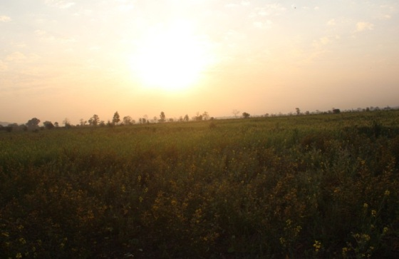 Sunrise behind the Tuar Dal Crop